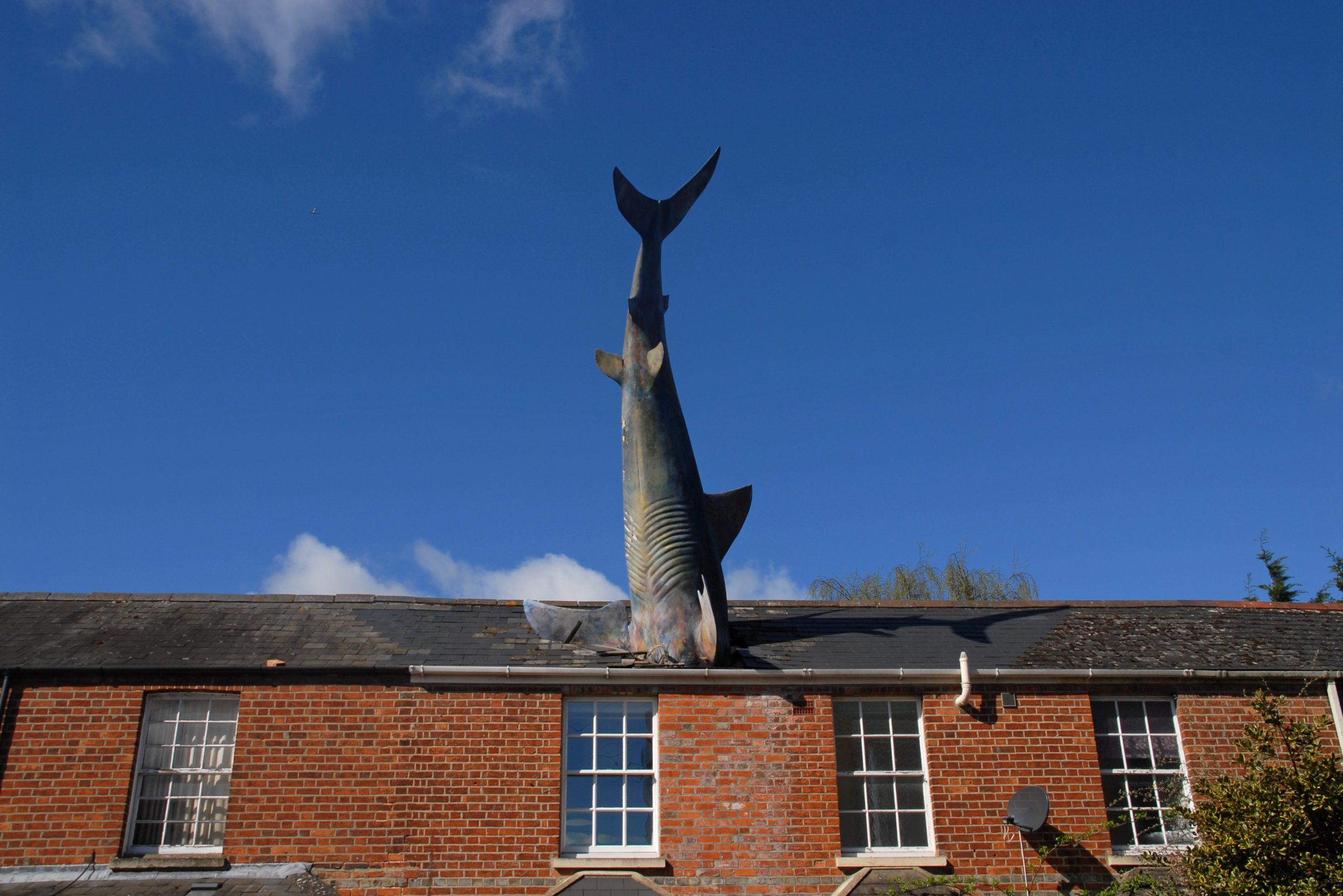 shark-scaled