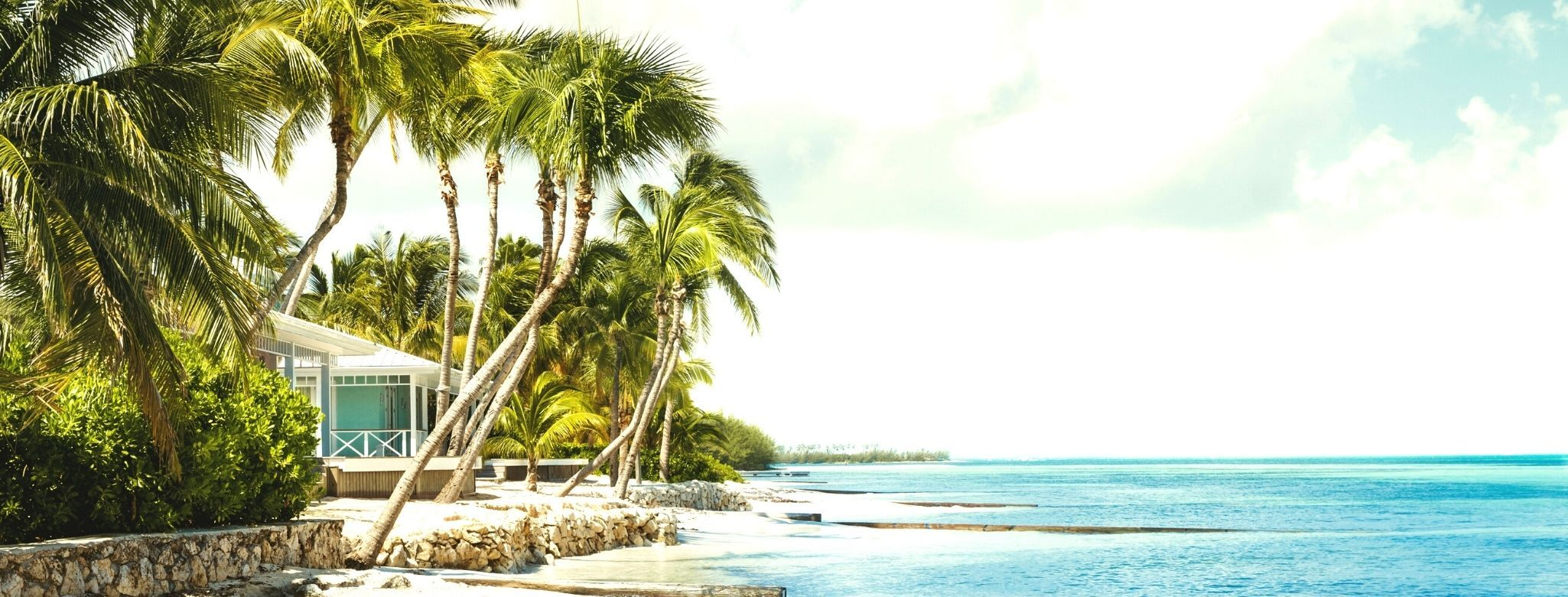 caymans island scape